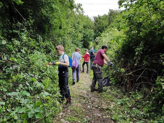 Cowbridge Scouts help clear the way
