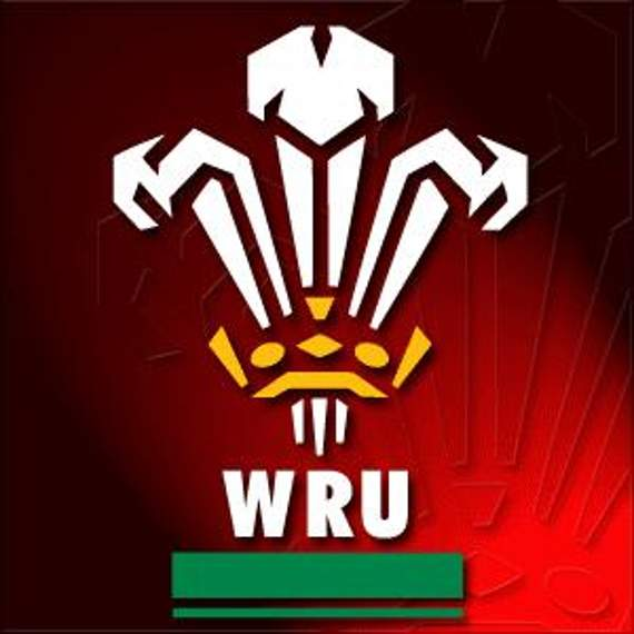 Uncapped duo, injured stars named for Wales